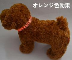 LEDバンド 幅2.5cm 犬 猫 LED首輪 オレンジ色 サイズL