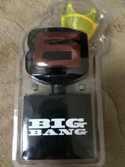 BIGBANG �y�����C�g