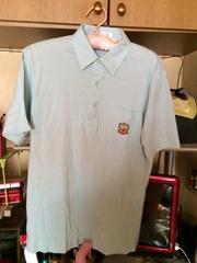 薄いグリーン系ポロシャツ