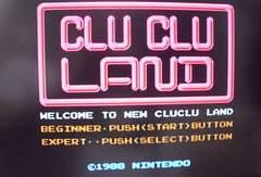 NEW CLUCLU LAND ニュークルクルランド 箱マニュアル無