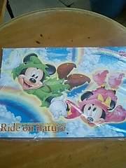 ☆ディズニーカレンダー ミッキー&ミニー2009
