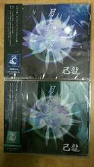己龍  月下美人CD 通常CD2タイプセット 新品未開封