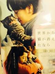 映画-世界から猫が消えたなら 正規品 佐藤健 宮崎あおい