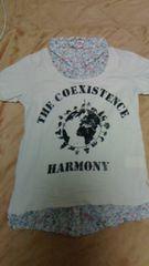 Ray Cassin!!カラフル襟付きTシャツ!!レイカズン〓フリーサイズ