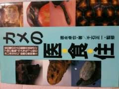 ペット【カメ】医食住・亀