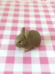 チョコエッグ ペット動物コレクション ネザーランドワーフ/うさぎ 茶