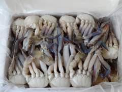 ☆お鍋などに 切りワタリガニ S 1キロ  冷凍