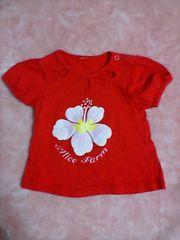 古着:サイズ80:赤にぴんくハイビスカスプリント柄、半袖シャツ