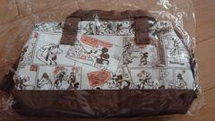 スケーター 保冷 ランチバッグ 2段弁当用 M ミッキーマウス