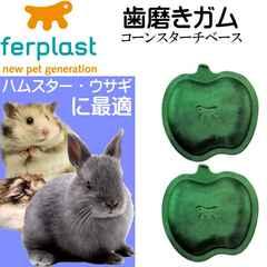 ウサギ・ハムスター用歯磨きガム真空パック アップル型 Fa308