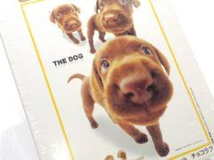 送円kgラブチョコTHEDOGジグソーパズル犬ラブラドールレトリバー女子玩具Puzzle