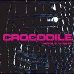 《CROCODILE》BES BEAR MAN KING-K 導楽 レゲエハンターチャンス