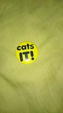 黄色に黒の英字缶バッジ