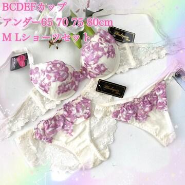 Tバック付き☆F80L バラ刺繍 アイボリー ブラ&ショーツ