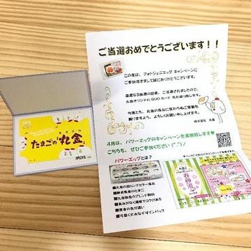 たまご丸金QUOカード1000円分未使用/当選品
