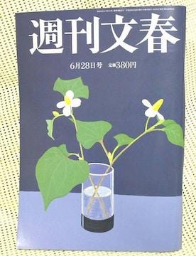 週刊文春 2012年 6月28日号 指原莉乃 原監督1億円 小沢妻 新品即