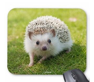 ハリネズミのマウスパッド 2