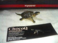 チョコQ アニマルテイルズ7  カミツキガメ