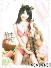 AKB48上質クリアファイル柏木由紀