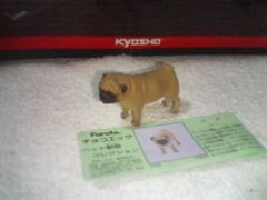 フルタ  ペット動物2  パグ                    フォーン
