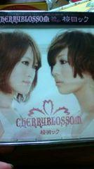 CHERRYBLOSSOM/桜ロック/レア/未開封