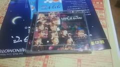 (祝)後藤真希;モーグ娘卒業ライブ帯アリDVD2002夏:LOVE_is_alive