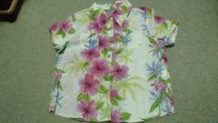 ハイビ♪柄可愛いシャツ♪3L