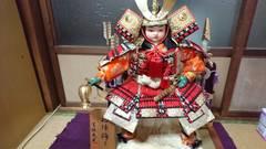 新中古…五月人形武者飾り毛皮敷きも備え付け…名アリ