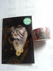 上野動物園ZOO園内限定マヌルネコ猫◆マスキングテープ新品未開封+ポストカード