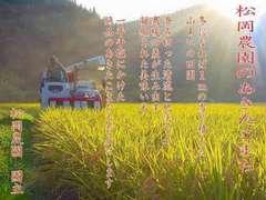 29年産 新米100% あきたこまち 玄米10キロ 精米無料