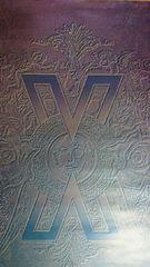 X JAPAN ポスター ロゴ YOSHIKI hide ToshI PATA TAIJI 1991