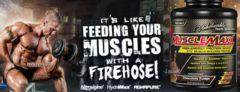 短期間で筋肉増強と筋力アップを実現!マッスルマックス プロテイン 特大2.3kg