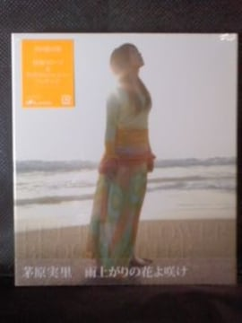 未開封CDマキシ 茅原実里 4th シングル「雨上がりの花よ咲け」