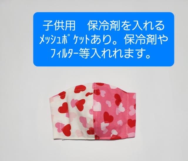 CNP3 ◆子供用 立体マスク  ポケット付き(*^^*)ハンドメイド 花粉症 鼻炎  < 女性ファッションの
