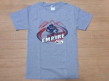即決!USA古着●鮮やかロゴデザイン半袖TシャツS灰★アメフト