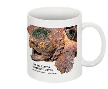 ワニガメのマグカップ