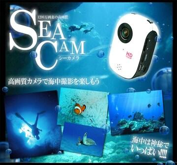 ♪1200万画像 防水仕様 スポーツカメラ MI-DV1000