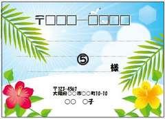 ■517(宛名シール)8枚■ハイビスカス�D
