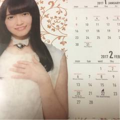即決 特典付 乃木坂46 2017年度 個別卓上カレンダー 中元日芽香
