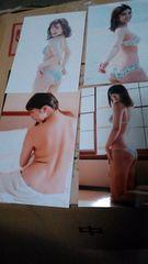 写真 柳ゆり菜100枚セット