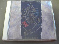 イマキュレイト・フールズCD DUMB POET廃盤