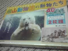 ジグソーパズル40ピース4枚旭山動物園シリーズ