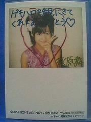 ゲキハロ4開催記念キャンペーン特典写真・L判1枚 2008.10/萩原舞