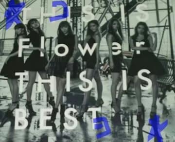 Flower フラワー THIS IS BEST 初回限定盤 2CD+2DVD 中古