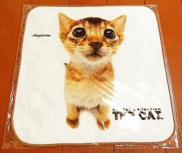 ♪新品袋入り♪THECAT(THEDOG)子猫ミニタオル�Aアビシニアン