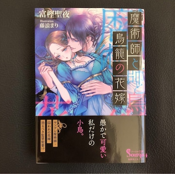 TL 小説 富樫聖夜 藤浪まり 魔術師と鳥籠の花嫁 ソーニャ文庫