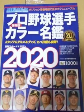 プロ野球選手カラー名鑑  プロ野球全日程入りクリアファイル付き