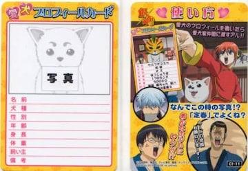 銀魂'くりあ壱★トレカ C1-11 愛犬プロフィールカード