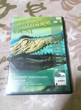 アニマルプラネット PLANET'S BEST 野生動物との遭遇