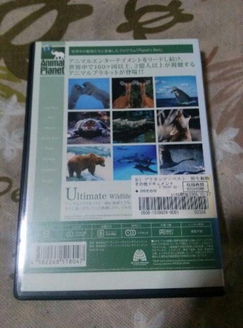 アニマルプラネット PLANET'S BEST 野生動物との遭遇 < CD/DVD/ビデオの